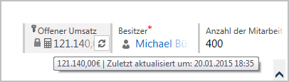 Microsoft_CRM_2015_Feldtyp_Rollup_UI